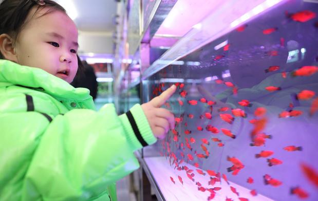 La Banque centrale chinoise recommande de lever les restrictions des naissances
