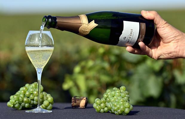 Un premier guide cote les vins belges