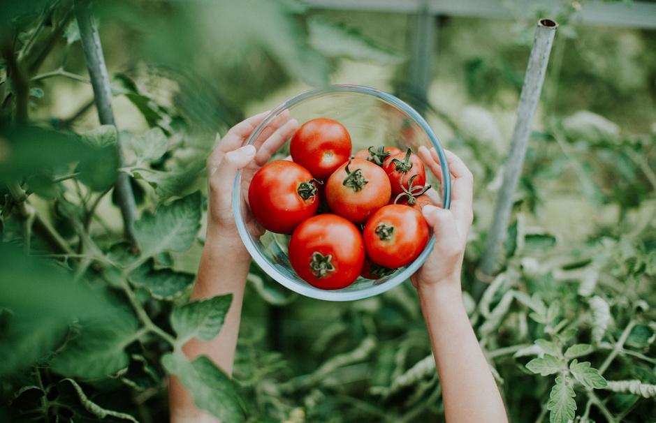 Made in China: wat de tomaat te maken heeft met de wereldeconomie