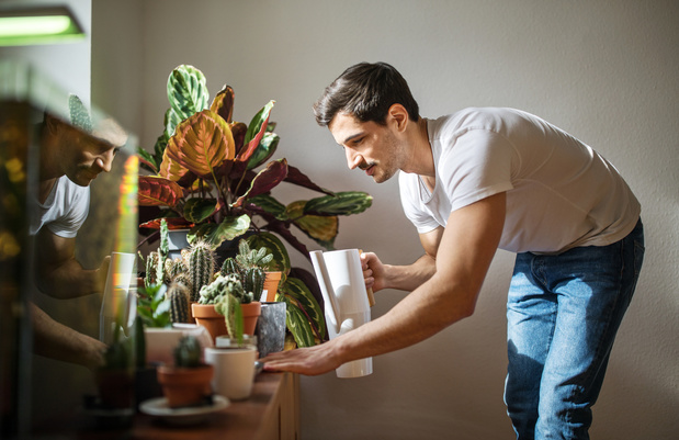 Prescrire des plantes en pot pour soigner la dépression