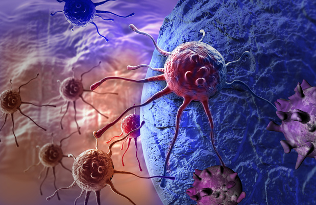 Carcinome du côlon : caractérisation immunologique et biomarqueurs pour l'immunothérapie