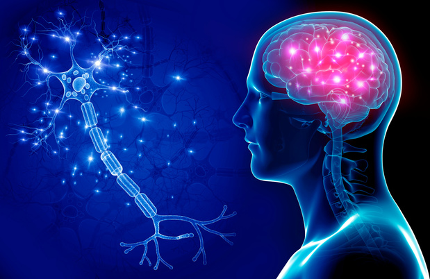 COVID-19 zou het centrale zenuwstelsel kunnen aantasten