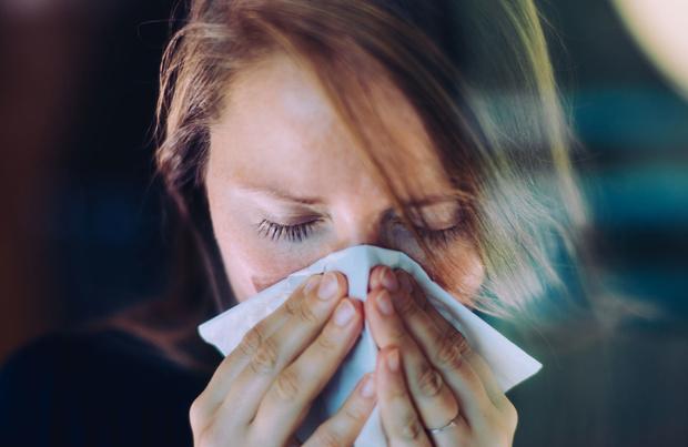 Doit-on craindre une explosion de grippe cet hiver ?