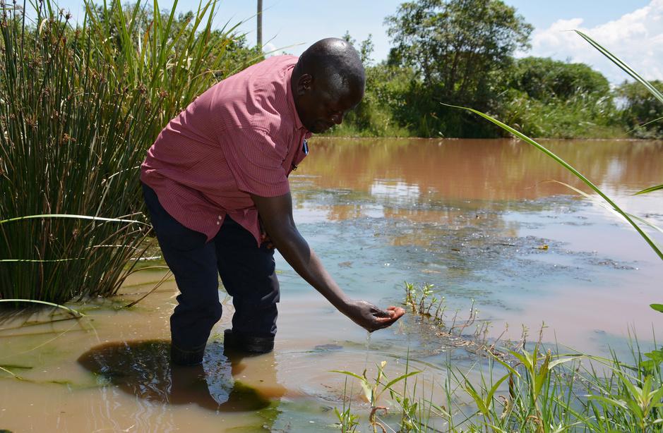 Opwarming in Afrika: minder malaria maar meer dengue