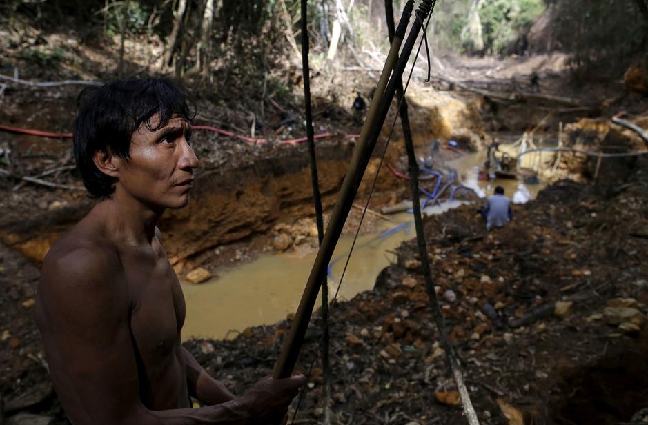 Goudkoorts en illegale mijnbouw eisen zware tol van Amazonewoud