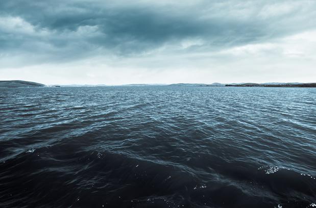 """""""La vie est née de l'océan, ne laissons pas l'humanité s'y noyer"""" (carte blanche)"""
