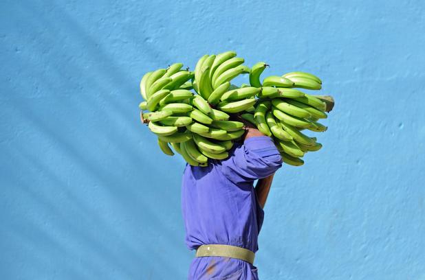 Nederlandse supermarkten gaan bananenboeren leefbaar loon betalen