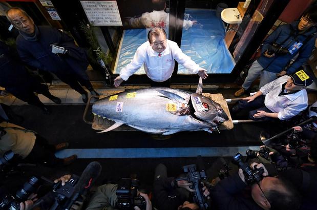 """Japon: nouvelle prise à 1,5 million d'euros pour le """"roi du thon"""""""