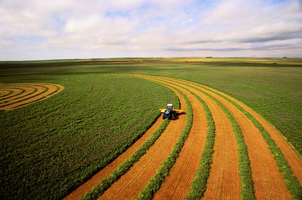 Landbouw knaagt al vijf eeuwen aan bodemkwaliteit