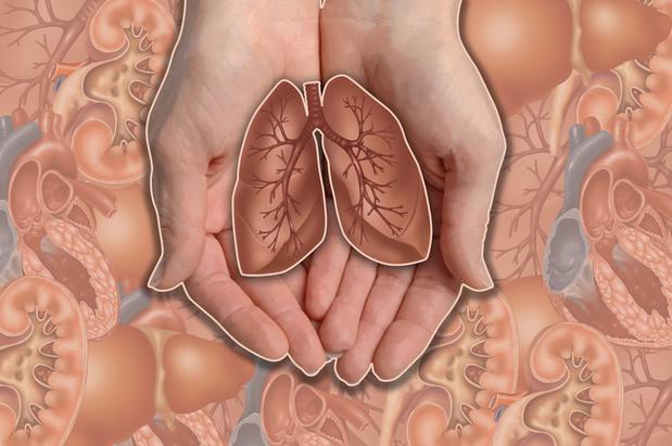 Ex-vivo longperfusie donorlongen geen impact op langetermijnresultaten na transplantatie