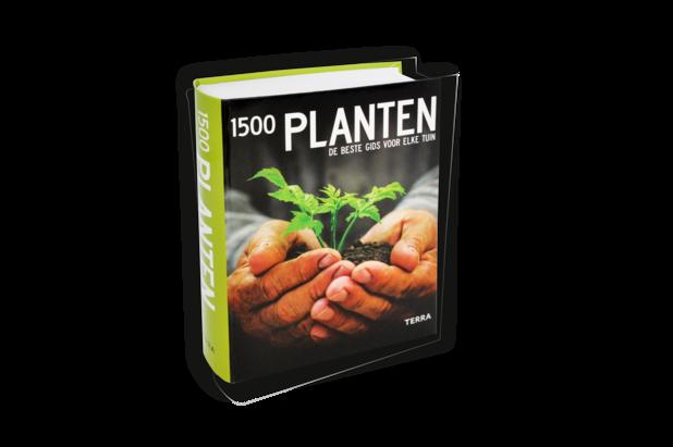 1500 planten. De beste plantengids voor de meest fantastische oase van groen en kleur.