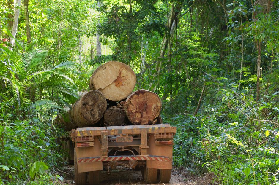 Amazonegemeenschappen zetten smartphones in tegen ontbossing