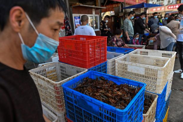 Chine: les sulfureux marchés de Wuhan rouvrent à l'ombre du coronavirus