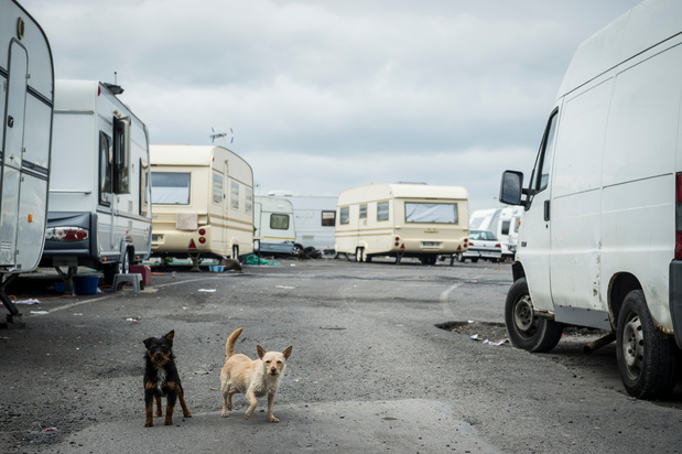 Eén op de drie Roma in België kan niet voorzien in basisbehoeften