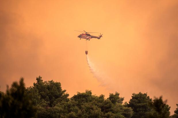 Un incendie continue de faire des ravages dans une précieuse réserve naturelle sur l'île d'Eubée