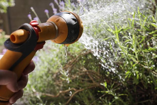 'Watertekort in Vlaanderen: stond het water ons maar aan de lippen'