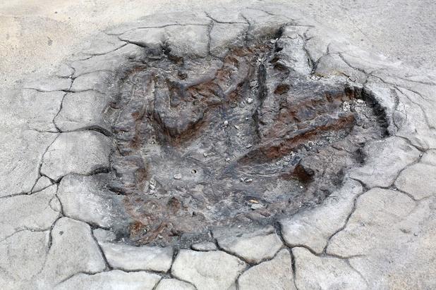 Les dinosaures ont été tués par un astéroïde et non par des éruptions volcaniques