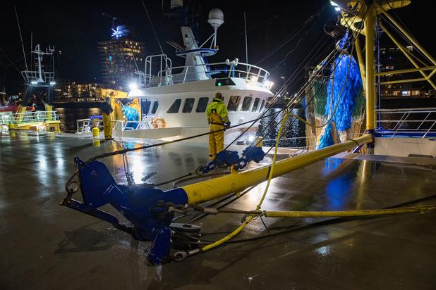 Les eaux britanniques riches en poissons, pomme de discorde du Brexit