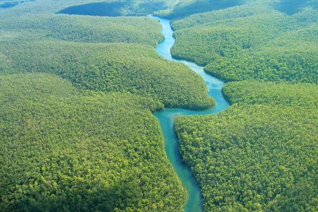 Plus de 160 défenseurs de l'environnement tués en 2018