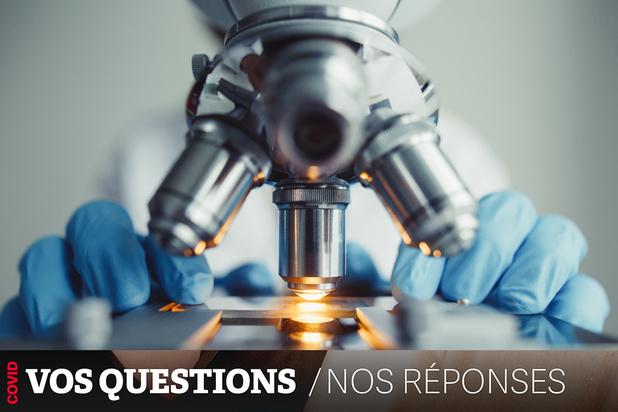 Testing : les laboratoires vétérinaires pourraient-ils prêter main-forte ?
