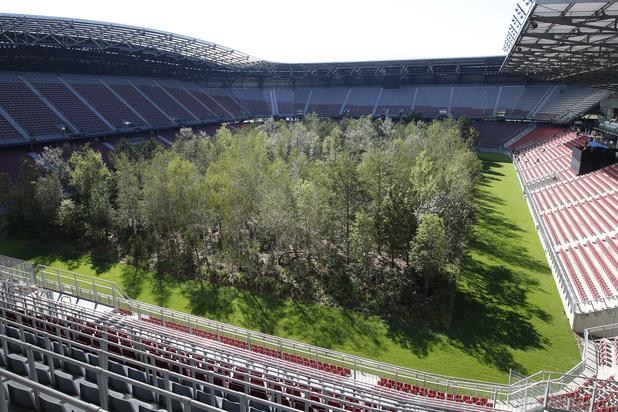 Oostenrijkse club plant bos op eigen veld