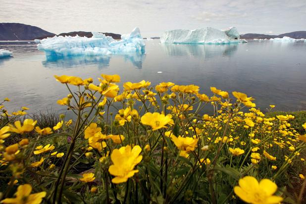 Voor het eerst geen sneeuw maar regen op Groenland: wat betekent dit voor onze planeet?