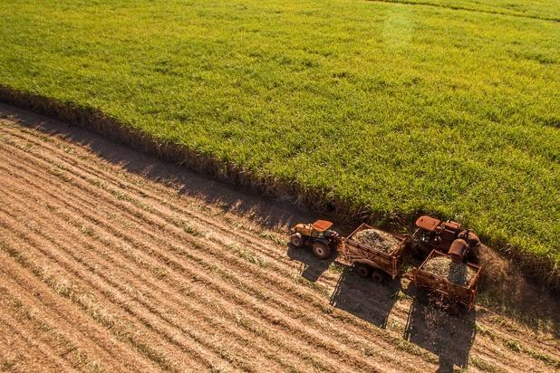 Alimentation et climat: pourquoi il est indispensable de revoir l'usage des terres