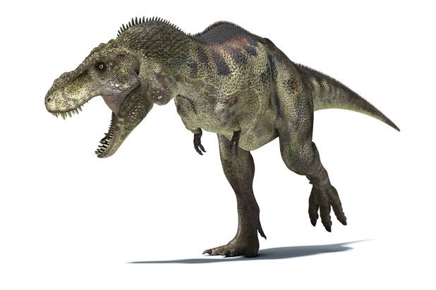 Tyrannosaurus Rex liep langzamer dan de mens