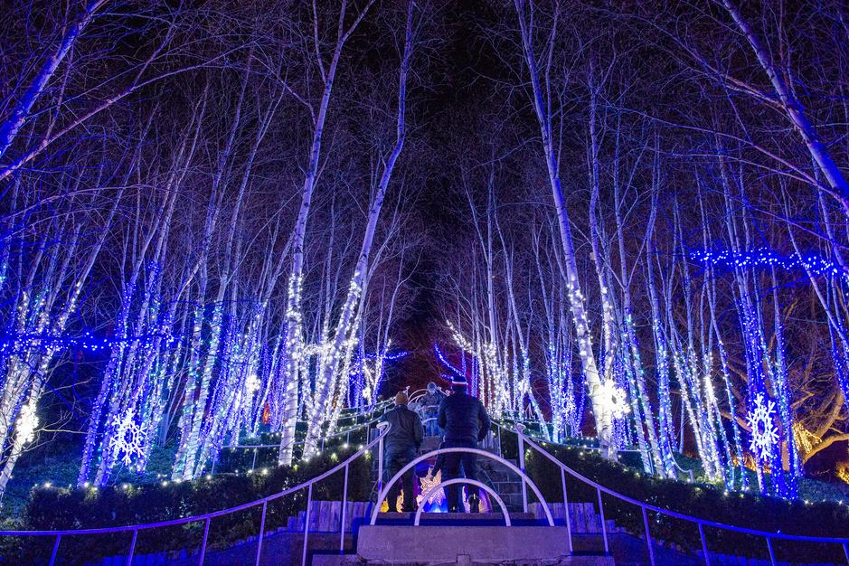 La magie de Noël malgré le Covid : tour du monde en images