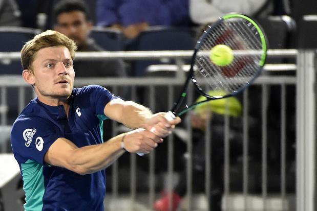 """David Goffin avant l'ATP Cup: """"Sur papier, ça a l'air incroyable"""""""