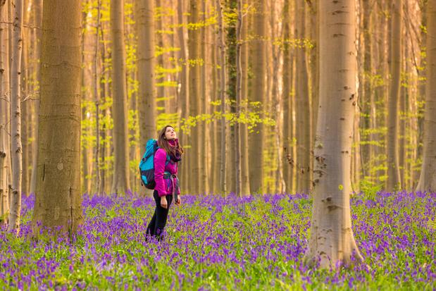 Maak dit jaar geen hyacintenuitstap