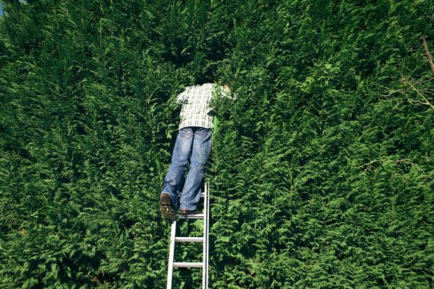"""""""A partir du 1er septembre, le jardin de votre voisin sera aussi un peu le vôtre"""""""