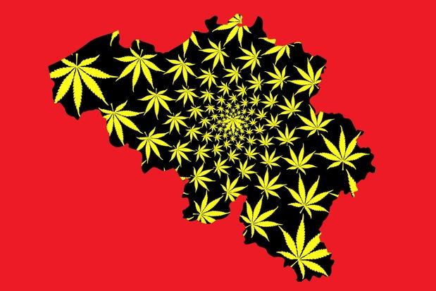 'Het Belgische beleid ten aanzien van medicinale cannabis is onwetenschappelijk en onmenselijk'