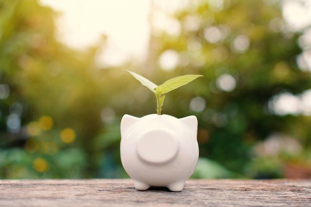 """La """"dette verte"""" commence à attirer des pays émergents"""