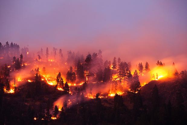 WHO vergelijkt pandemie met bosbrand: 'Vonken zullen weer uitgroeien tot razende brand'