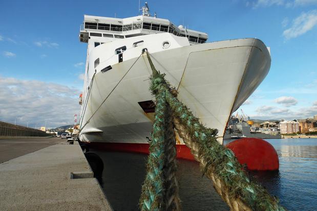 Inwoners Palma de Mallorca willen maar één cruiseschip per dag