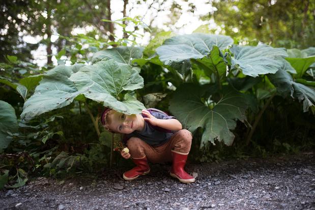 'Iedere stad verdient een voedselbos'