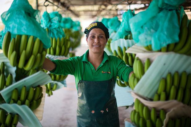 Ben jij zo eerlijk als een Fairtrade banaan?