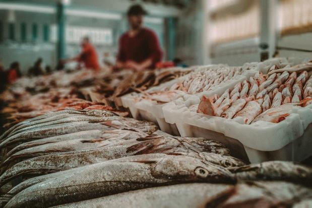 36 procent foute etiketten: je eet niet altijd de vissoort die je denkt te eten