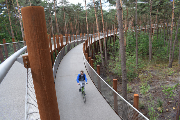 'Fietsen door de bomen' kaapt internationale design award weg