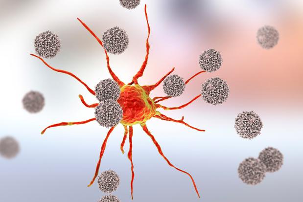 Découverte d'un lymphocyte T qui attaquerait presque tous les cancers