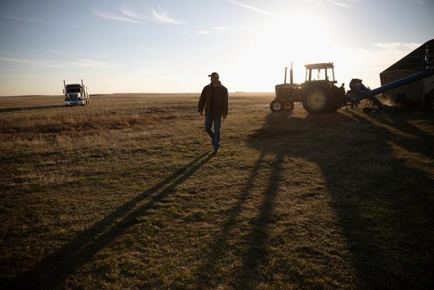 """Plan de relance européen : """"une amère déception"""" pour l'agriculture"""