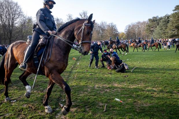 Bois de la Cambre : enquête suite aux images de jeunes piétinés par des chevaux