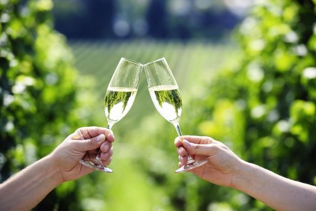 """En Champagne, 2019 s'annonce comme une nouvelle """"année exceptionnelle"""""""