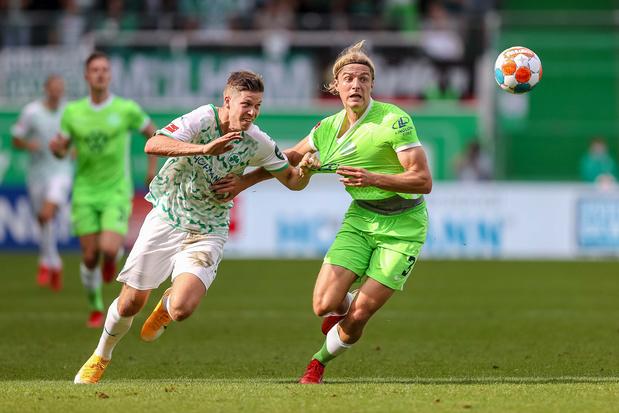 Lille-Wolfsburg: een erg Belgisch getint duel in de Champions League