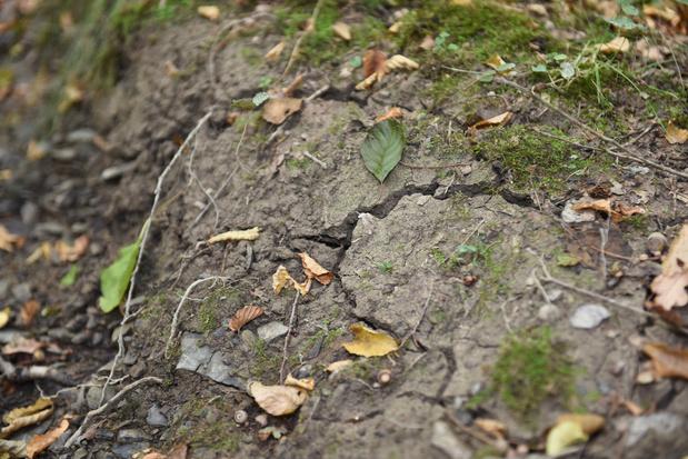 La totalité de la Flandre interdit le pompage de l'eau à cause de la sécheresse sévère