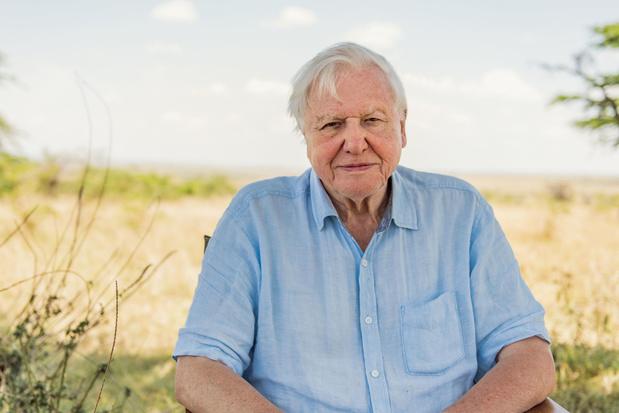 'David Attenborough maakt beter rampenfilms dan Christopher Nolan'