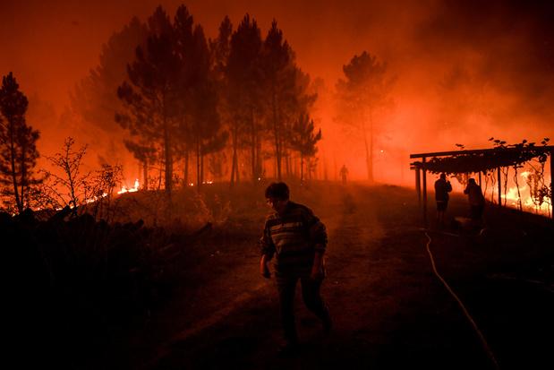 En images: mobilisation exceptionnelle pour lutter contre un vaste incendie