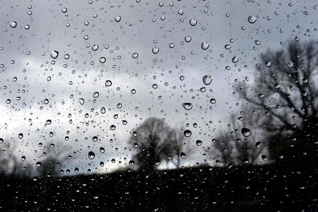 Le vent provoque des dégâts en Wallonie picarde et dans le Brabant wallon