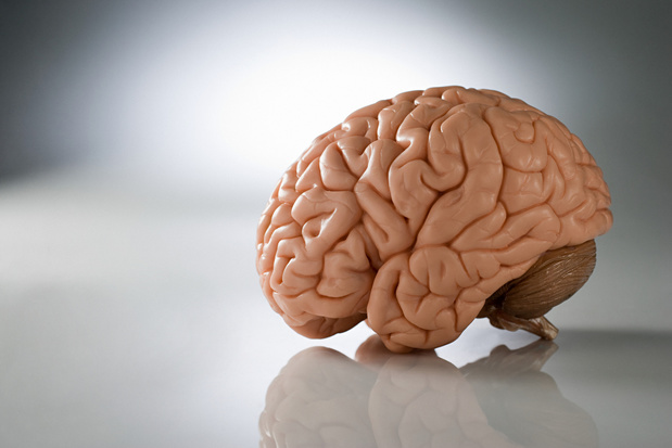 Le coronavirus affecterait aussi le cerveau